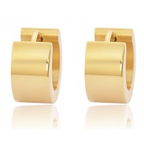Stainless Steel Gold Tone Unisex Earrings