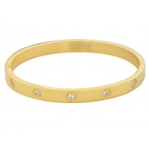 Stainless Steel Ladies Bangle Yellow Gold Plated With Cubic Zirconia
